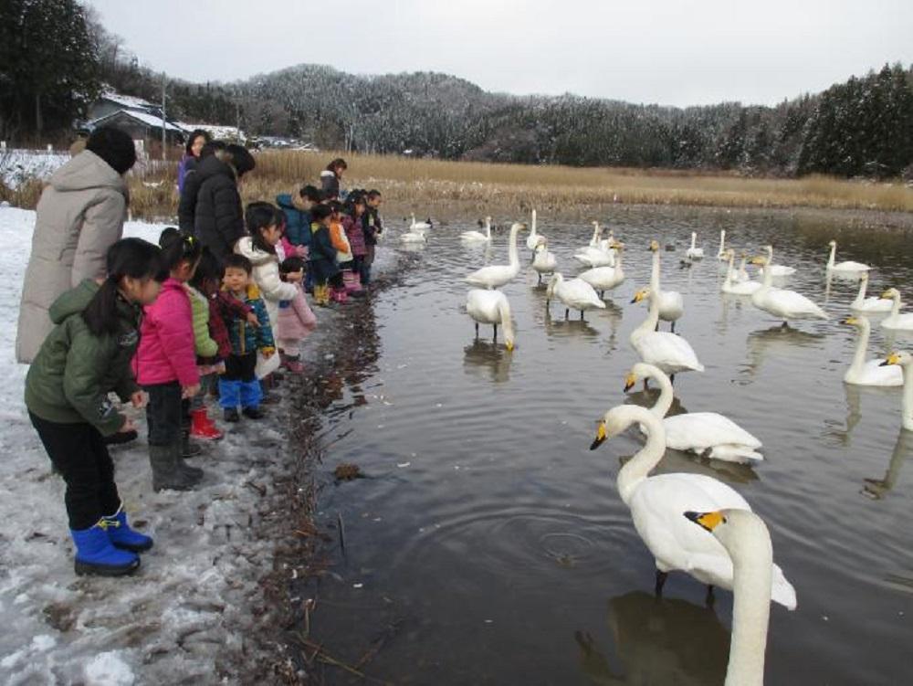 Nagamine Lake | 長嶺大池